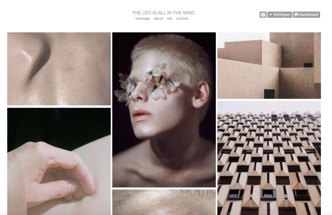 """""""The Leo Is All In The Mind"""" ist das Produkt einer jungen niederländischen Designerin, die den """"Infinite Scroll"""" für sich entdeckt hat. Sie sammelt Bilder auf Tumblr, die dann so arrangiert werden, dass sie farblich ineinander übergehen. Das wird jedoch erst beim Scrollen erfahrbar. Damit legt sie zentrale Mechanismen von Tumblr frei: Bilder gehen hier erst im Plural auf und sind auf unsere Teilnahme, dass Scrollen, angewiesen."""