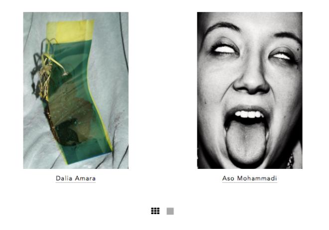 Der Greif ist ein Print- aber auch Online-Magazin und lässt - wenn sie es nicht selbst tun - Einzelbilder von Fotografen sowie Texte von Autoren von verschiedenen Protagonisten des Fotografie-Betriebs kuratieren.