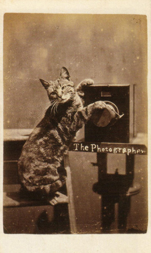 Thomas Edison: The Photographer, ca. 1870.