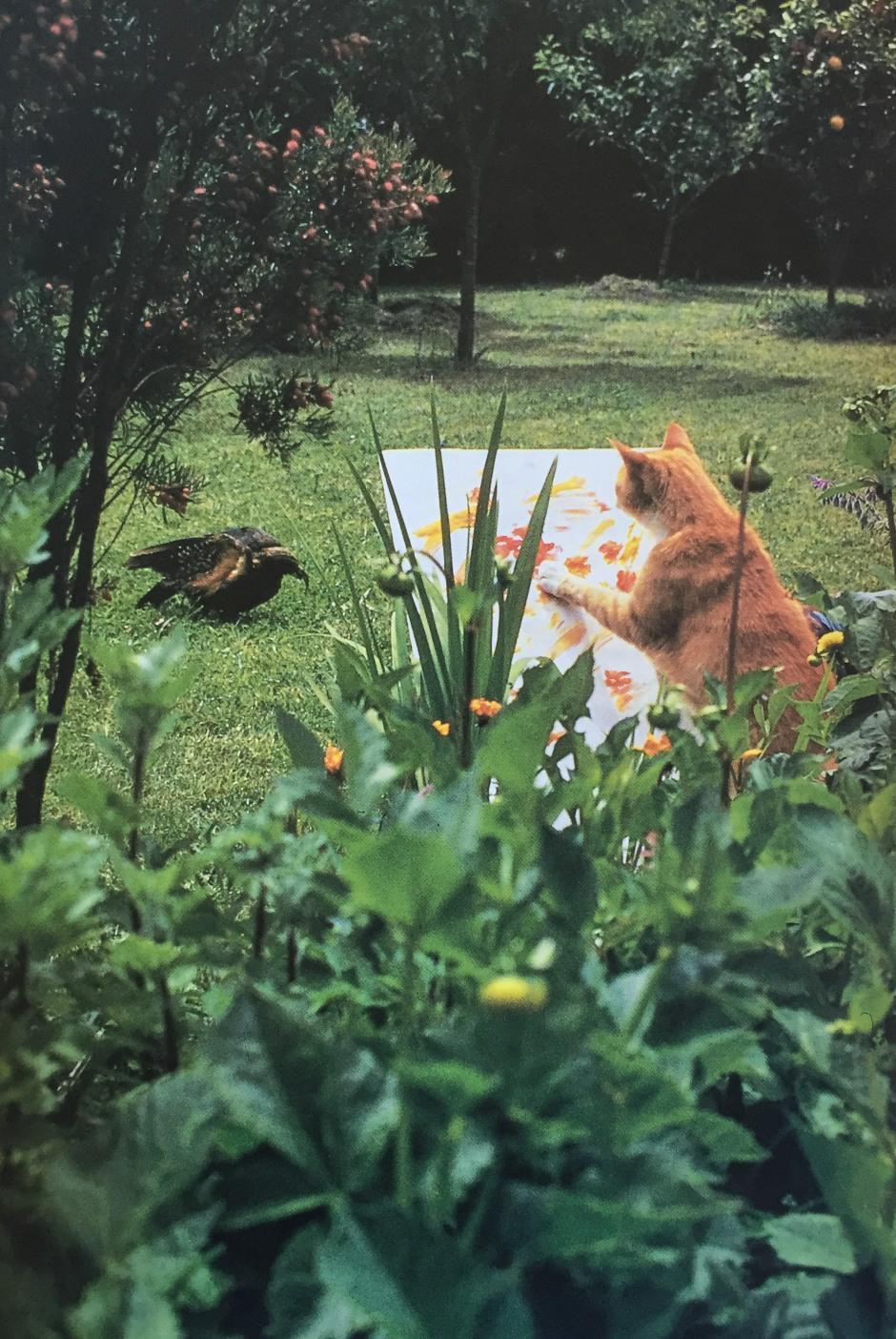 """""""Orangello hat seine Arbeit an einem auf dem Kopf stehenden Dahlienbild unterbrochen, um einen zahmen Papagei zu beobachten, der eben vor seinen Füßen gelandet ist."""""""