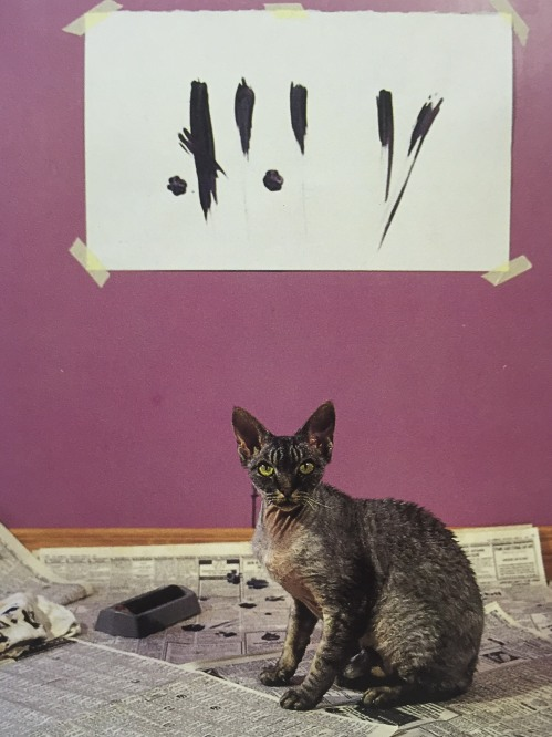"""Princess ist """"elementare Fragmentistin"""". Das Bild im Hintergrund trägt den gewagten Titel """"Regelmäßig verspottete Nagetiere"""" und wurde mit Tusche auf Papier aufgetragen."""